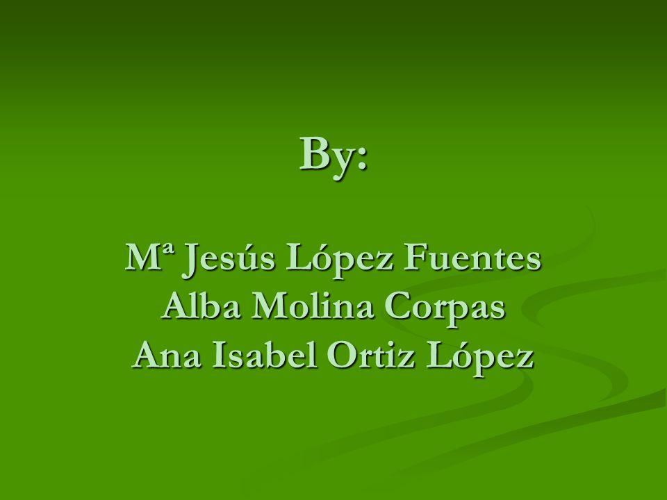 By: Mª Jesús López Fuentes Alba Molina Corpas Ana Isabel Ortiz López