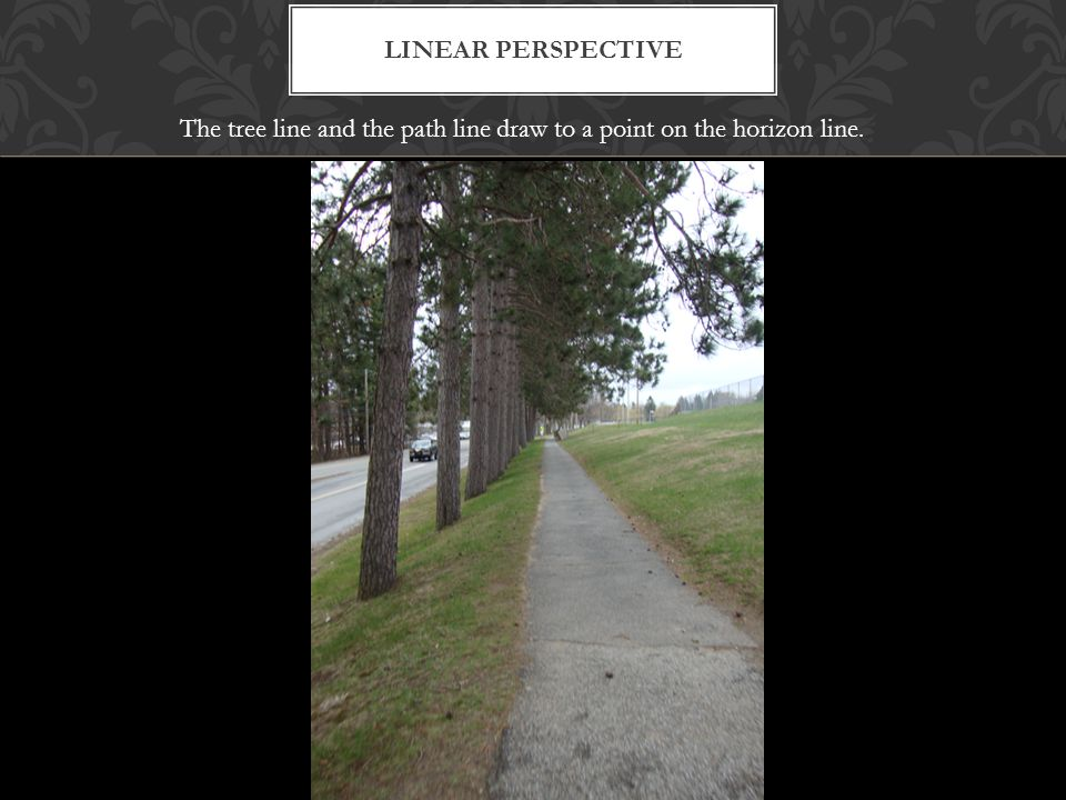 LINEAR PERSPECTIVE The tree line and the path line draw to a point on the horizon line.