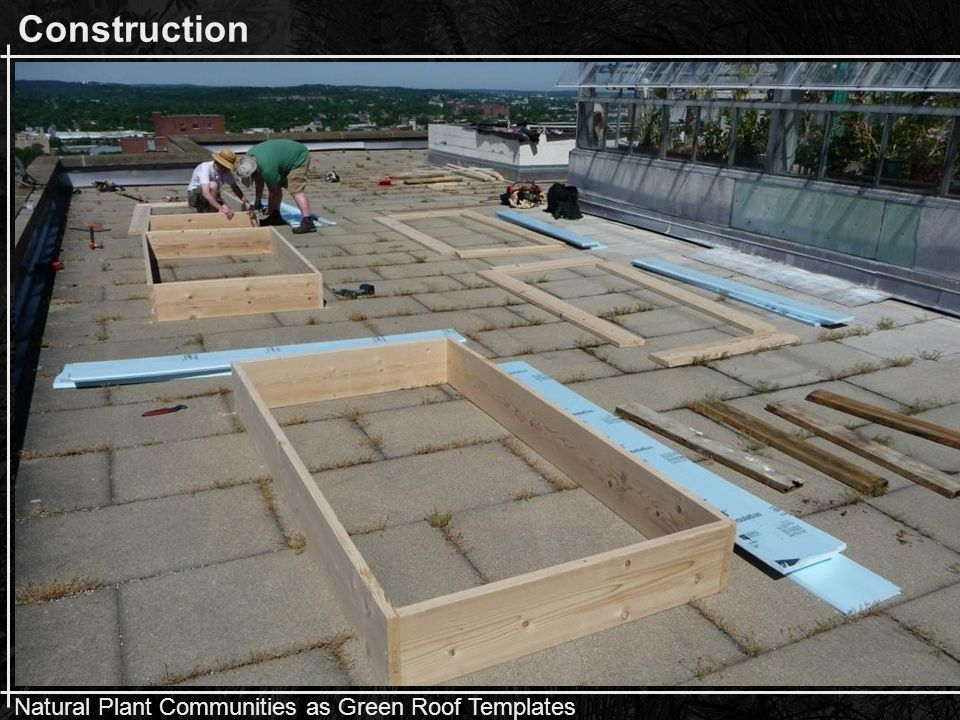Natural Plant Communities as Green Roof Templates Construction