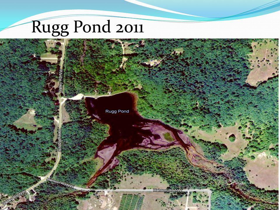 Rugg Pond 2011