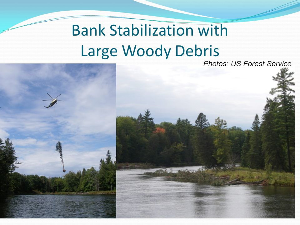 Bank Stabilization with Large Woody Debris Photos: US Forest Service