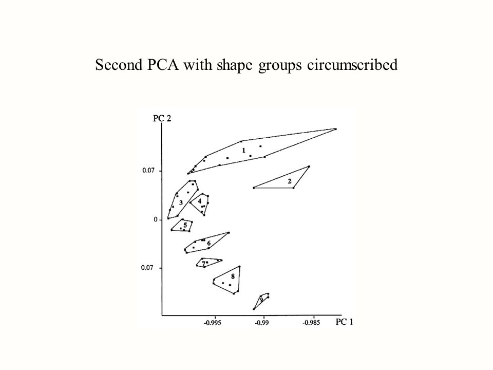 Second PCA with shape groups circumscribed