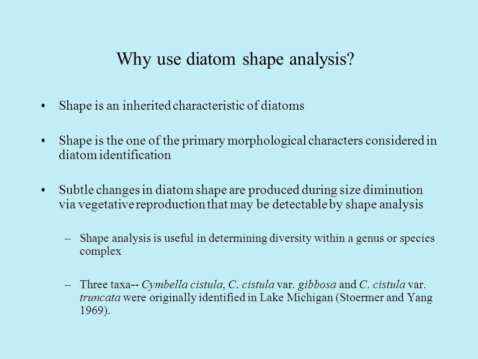Why use diatom shape analysis.