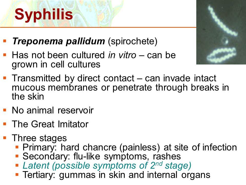 Copyright © 2006 Pearson Education, Inc., publishing as Benjamin Cummings  Treponema pallidum (spirochete)  Has not been cultured in vitro – can be