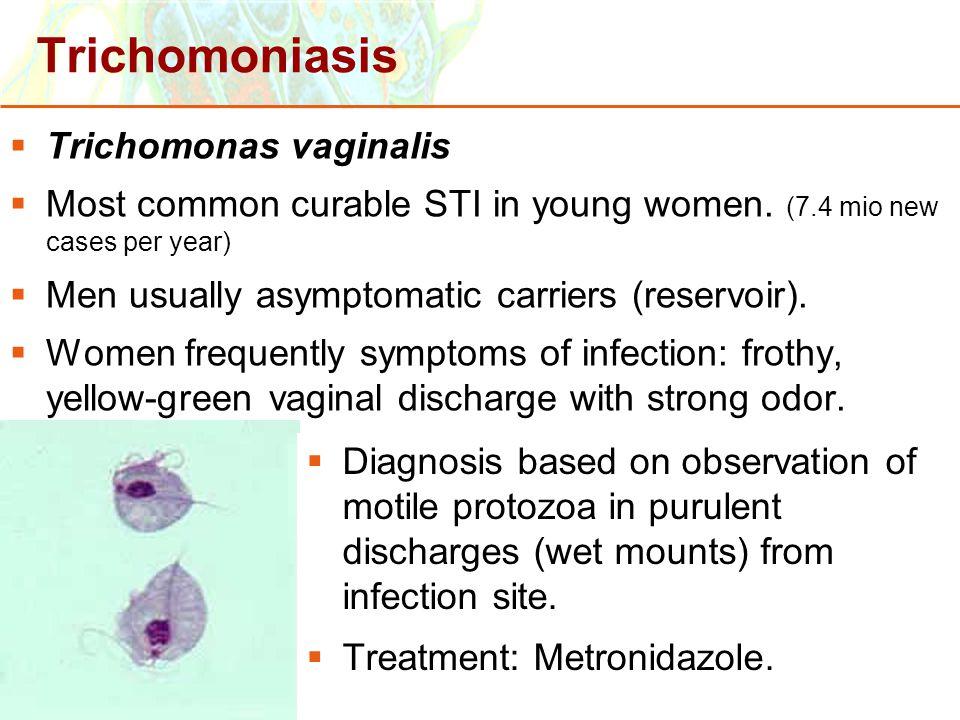 Copyright © 2006 Pearson Education, Inc., publishing as Benjamin Cummings Trichomoniasis  Trichomonas vaginalis  Most common curable STI in young wo