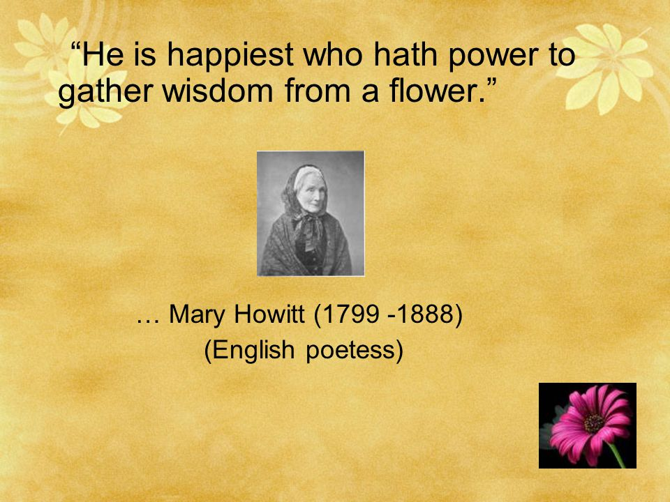 He is happiest who hath power to gather wisdom from a flower. … Mary Howitt (1799 -1888) (English poetess)