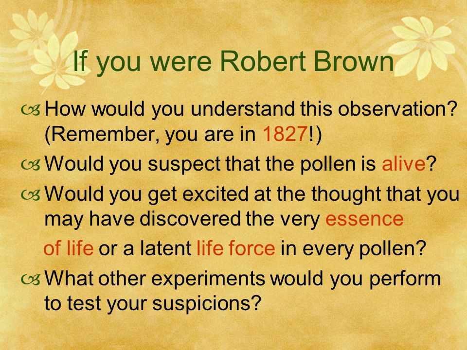 If you were Robert Brown  How would you understand this observation.