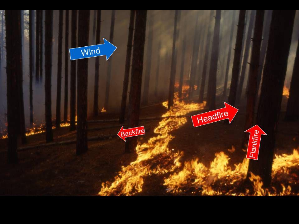Headfire Flankfire Backfire Wind