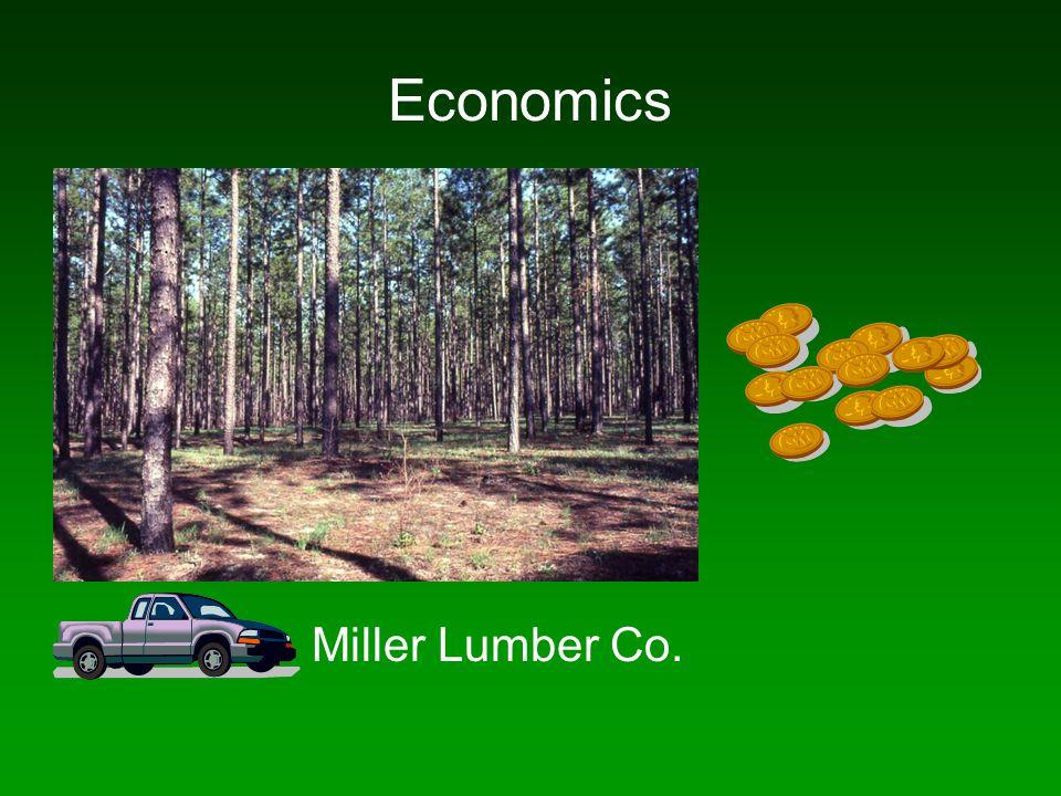 Miller Lumber Co.