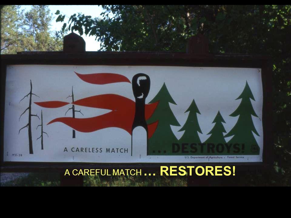 A CAREFUL MATCH … RESTORES!