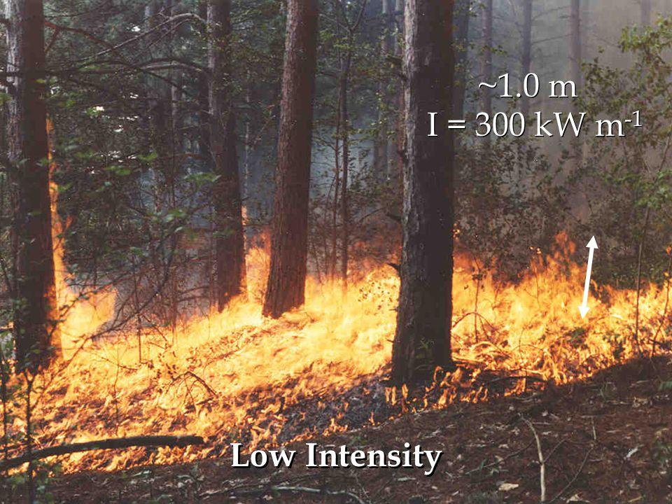 ~0.5 m I = 58 kW m -1 ~1.0 m Low Intensity I = 300 kW m -1