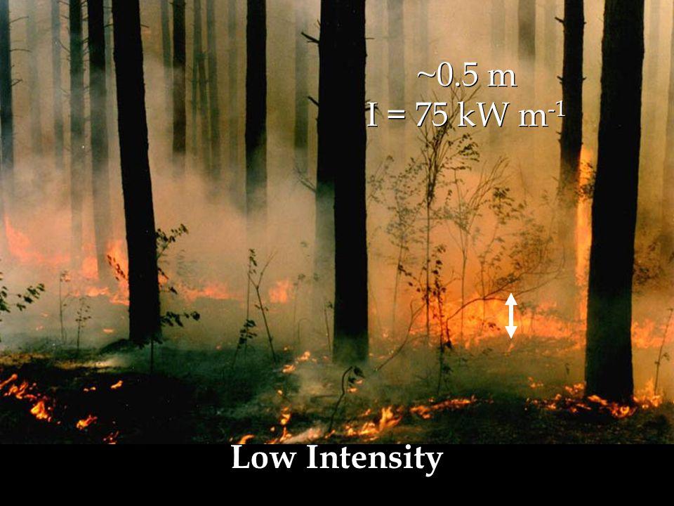 ~0.5 m I = 75 kW m -1 ~0.5 m I = 75 kW m -1 Low Intensity