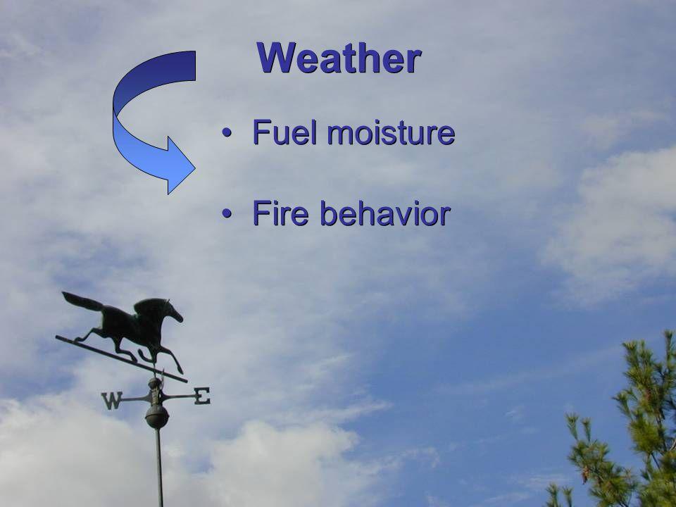 Weather Fuel moisture Fire behavior Fuel moisture Fire behavior