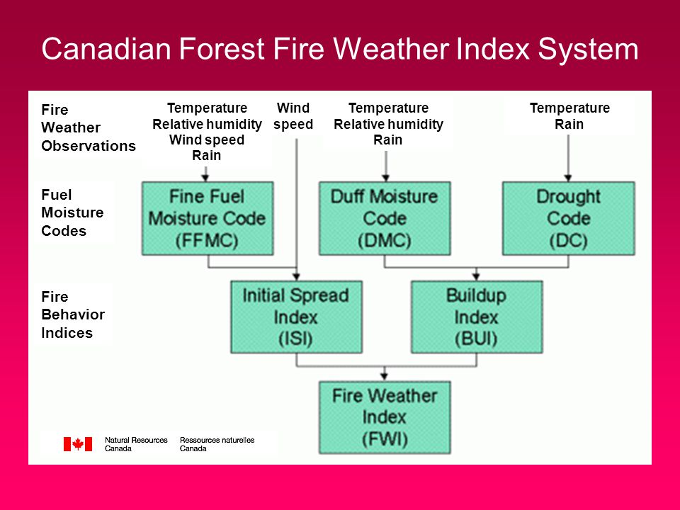 Canadian Forest Fire Weather Index System Fuel Moisture Codes Fire Behavior Indices Wind speed Temperature Relative humidity Rain Temperature Rain Fire Weather Observations Temperature Relative humidity Wind speed Rain
