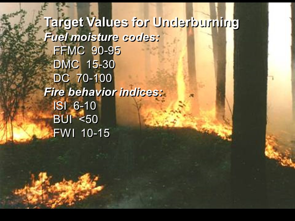 Target Values for Underburning Fuel moisture codes: FFMC 90-95 DMC 15-30 DC 70-100 Fire behavior indices: ISI 6-10 BUI <50 FWI 10-15 Target Values for Underburning Fuel moisture codes: FFMC 90-95 DMC 15-30 DC 70-100 Fire behavior indices: ISI 6-10 BUI <50 FWI 10-15