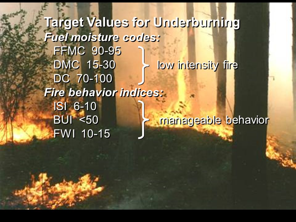 Target Values for Underburning Fuel moisture codes: FFMC 90-95 DMC 15-30 low intensity fire DC 70-100 Fire behavior indices: ISI 6-10 BUI <50 manageable behavior FWI 10-15 Target Values for Underburning Fuel moisture codes: FFMC 90-95 DMC 15-30 low intensity fire DC 70-100 Fire behavior indices: ISI 6-10 BUI <50 manageable behavior FWI 10-15