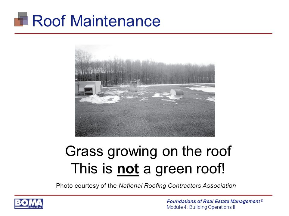 Foundations of Real Estate Management Module 4: Building Operations II ® Roof Maintenance Grass growing on the roof This is not a green roof.