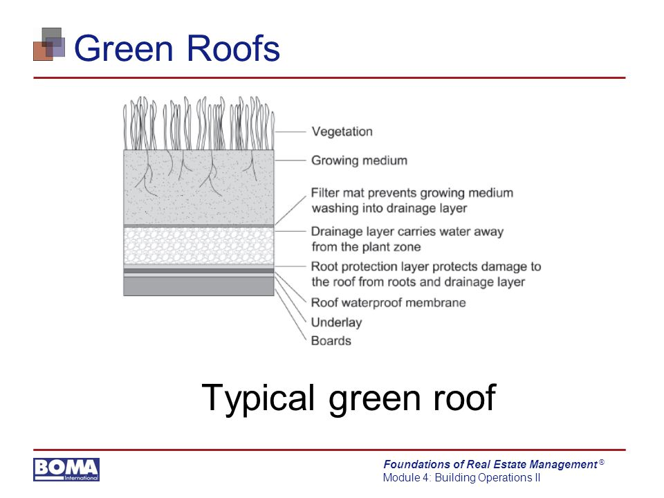 Foundations of Real Estate Management Module 4: Building Operations II ® Green Roofs Typical green roof