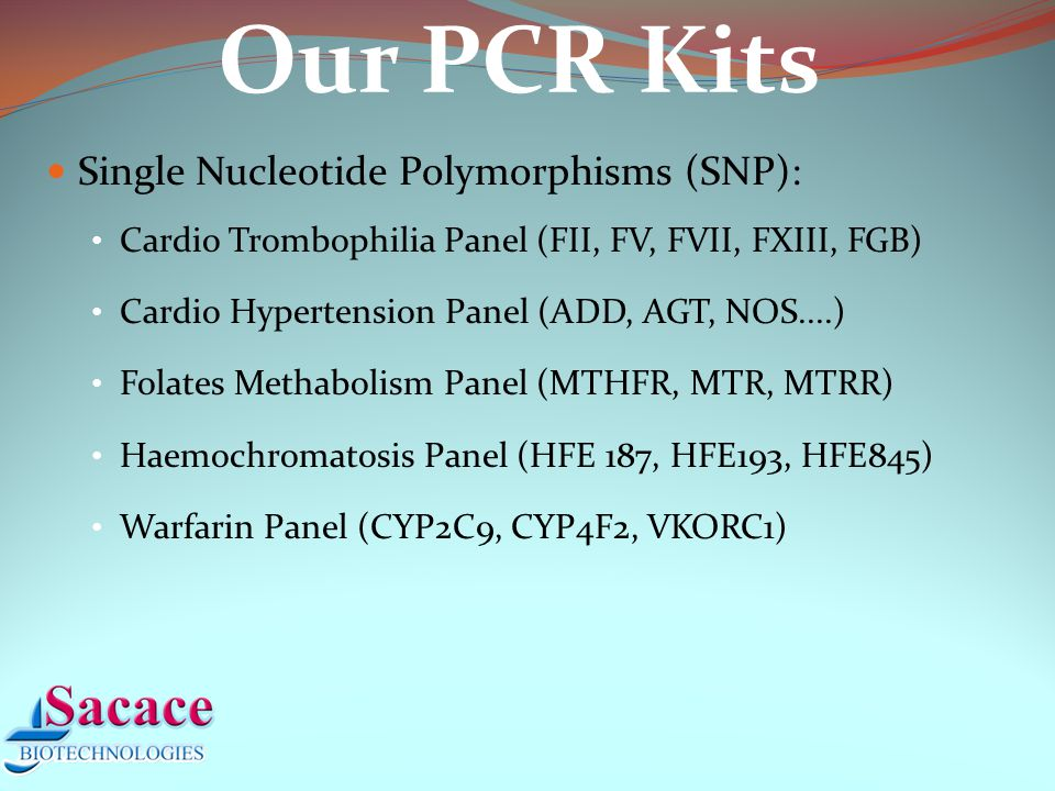 Oncologic diseases (Mbcr-ABL, BRCA) Genetically Modified Organisms (Soya, Corn, Rice, Tomatoes) Veterinary kits (CPV, PPV, CSVF, BVDV, ASF, Brucella, TGEV...) RNA/DNA extraction kits Our PCR Kits