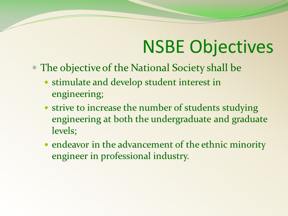 The Power of One.Who elects the NSBE National Executive Board every year.