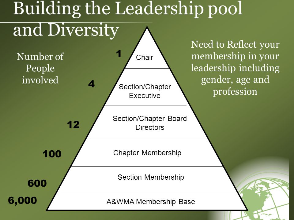 Building the Leadership pool and Diversity Chair Section/Chapter Executive Chapter Membership Section/Chapter Board Directors 1 12 100 Section Membership A&WMA Membership Base 600 4 6,000 Number of People involved Need to Reflect your membership in your leadership including gender, age and profession
