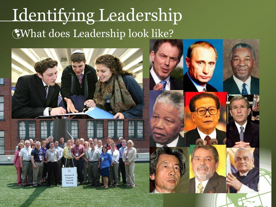 Identifying Leadership  What does Leadership look like