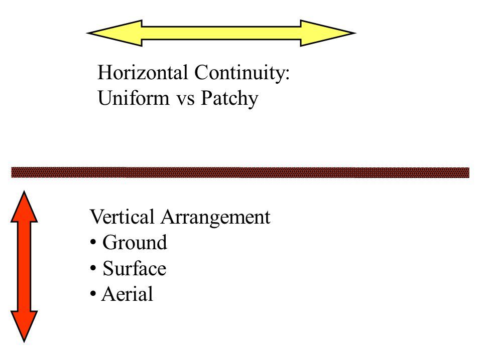 Horizontal Continuity: Uniform vs Patchy Vertical Arrangement Ground Surface Aerial