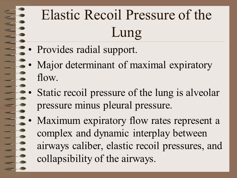 Elastic Recoil Pressure of the Lung Provides radial support.