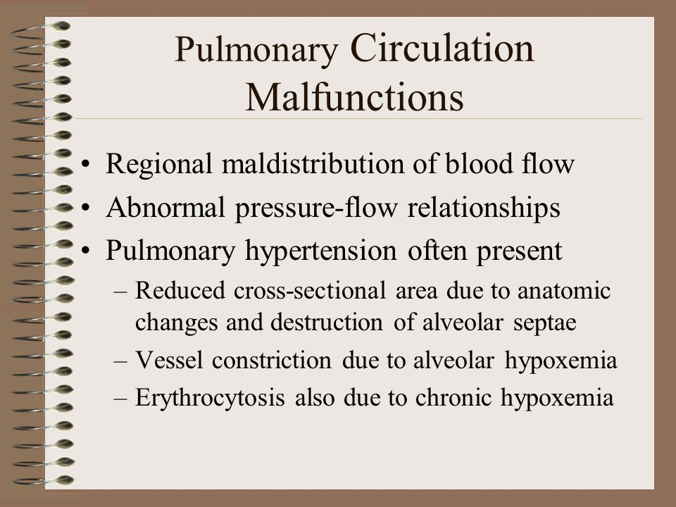 Pulmonary Circulation Malfunctions Regional maldistribution of blood flow Abnormal pressure-flow relationships Pulmonary hypertension often present –R