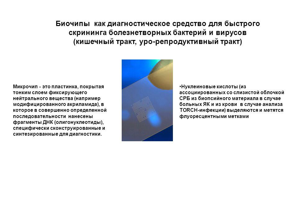 Биочипы как диагностическое средство для быстрого скрининга болезнетворных бактерий и вирусов (кишечный тракт, уро-репродуктивный тракт) Микрочип - эт