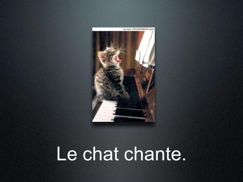Le chat chante.