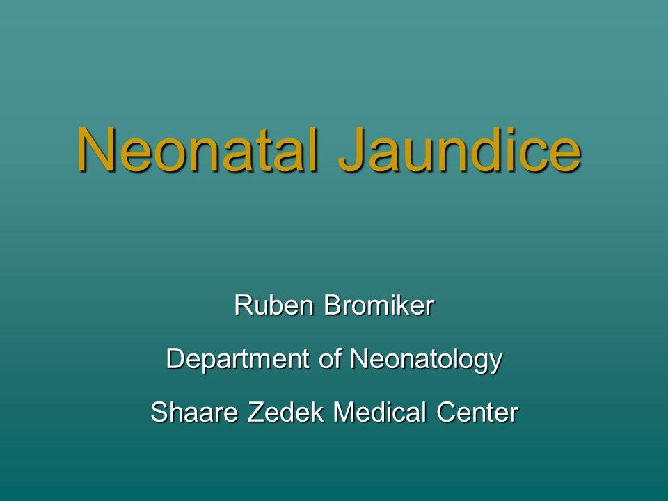 Neonatal Jaundice Ruben Bromiker Department of Neonatology Shaare Zedek Medical Center