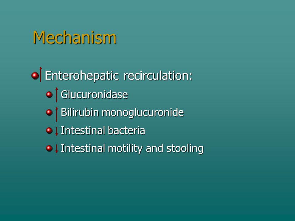 Mechanism Enterohepatic recirculation: Enterohepatic recirculation: Glucuronidase Glucuronidase Bilirubin monoglucuronide Bilirubin monoglucuronide In