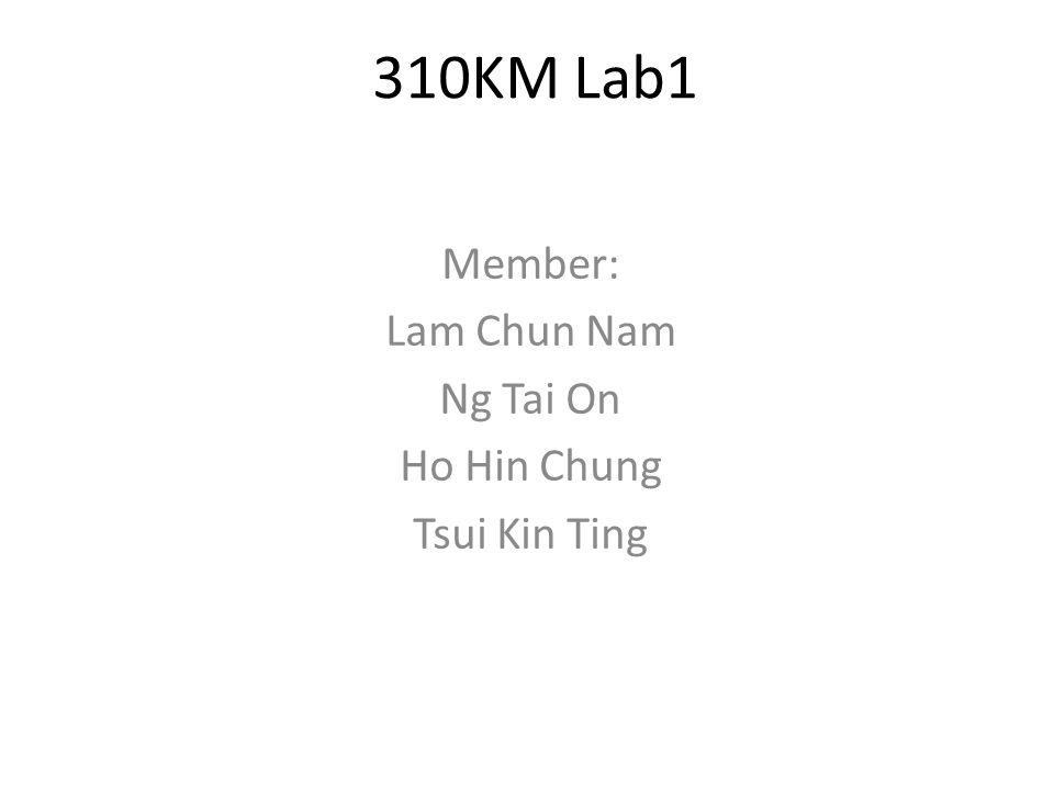 310KM Lab1 Member: Lam Chun Nam Ng Tai On Ho Hin Chung Tsui Kin Ting