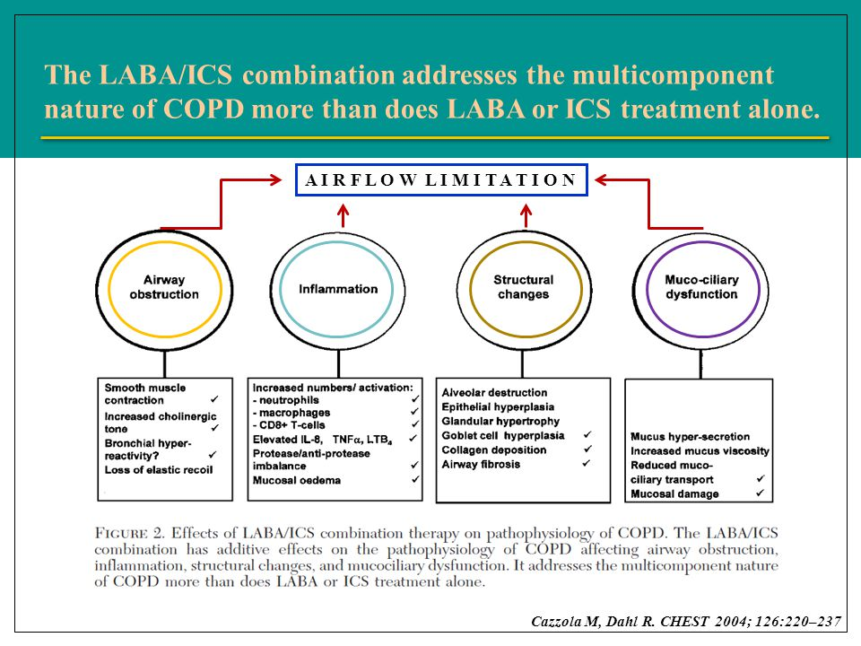 The LABA/ICS combination addresses the multicomponent nature of COPD more than does LABA or ICS treatment alone.