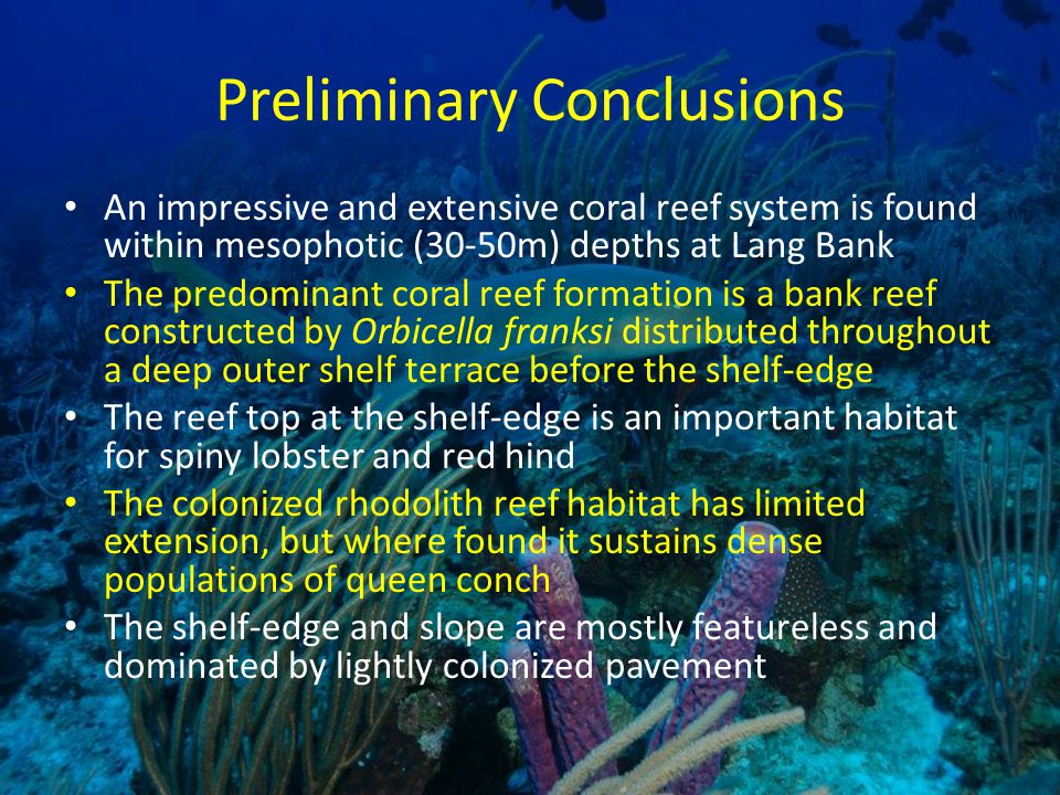 Preliminary Conclusions An impressive and extensive coral reef system is found within mesophotic (30-50m) depths at Lang Bank The predominant coral reef formation is a bank reef constructed by Orbicella franksi distributed throughout a deep outer shelf terrace before the shelf-edge The reef top at the shelf-edge is an important habitat for spiny lobster and red hind The colonized rhodolith reef habitat has limited extension, but where found it sustains dense populations of queen conch The shelf-edge and slope are mostly featureless and dominated by lightly colonized pavement