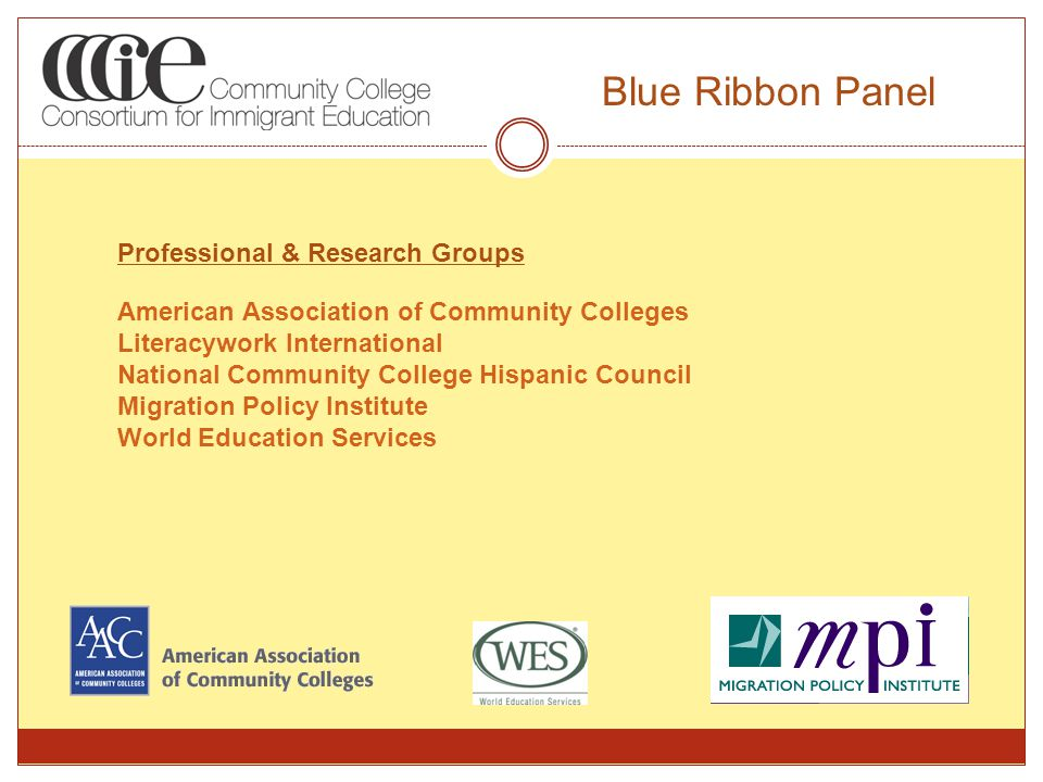 Professional & Research Groups American Association of Community Colleges Literacywork International National Community College Hispanic Council Migration Policy Institute World Education Services Blue Ribbon Panel