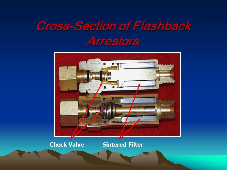 Cross-Section of Flashback Arrestors Check ValveSintered Filter