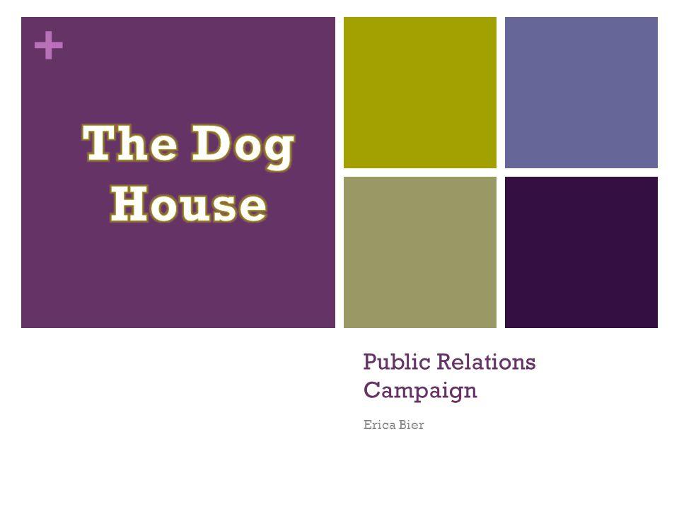 + Public Relations Campaign Erica Bier