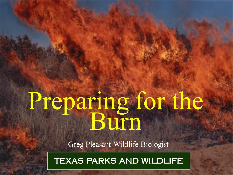 Preparing for the Burn Greg Pleasant Wildlife Biologist