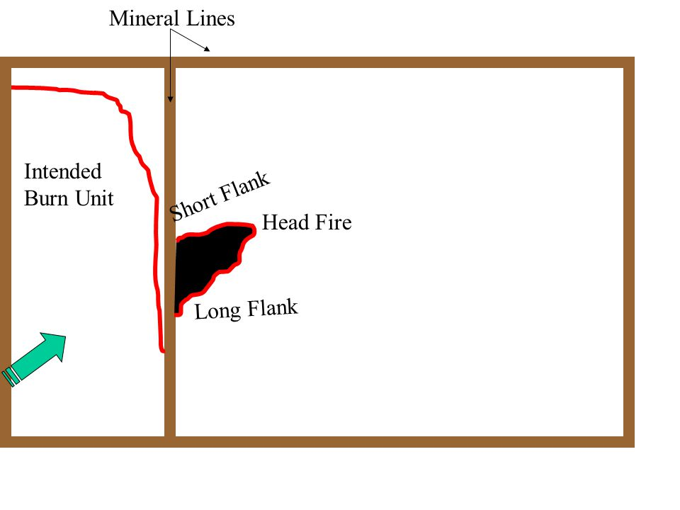 Head Fire Short Flank Long Flank Intended Burn Unit Mineral Lines