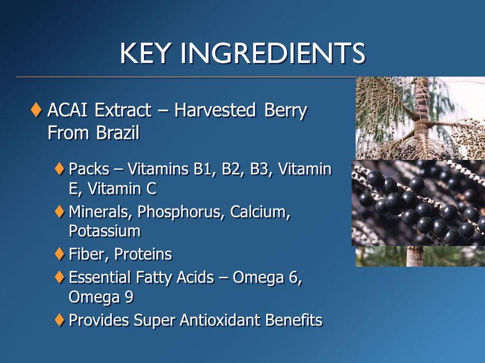 KEY INGREDIENTS  ACAI Extract – Harvested Berry From Brazil  Packs – Vitamins B1, B2, B3, Vitamin E, Vitamin C  Minerals, Phosphorus, Calcium, Potassium  Fiber, Proteins  Essential Fatty Acids – Omega 6, Omega 9  Provides Super Antioxidant Benefits  ACAI Extract – Harvested Berry From Brazil  Packs – Vitamins B1, B2, B3, Vitamin E, Vitamin C  Minerals, Phosphorus, Calcium, Potassium  Fiber, Proteins  Essential Fatty Acids – Omega 6, Omega 9  Provides Super Antioxidant Benefits