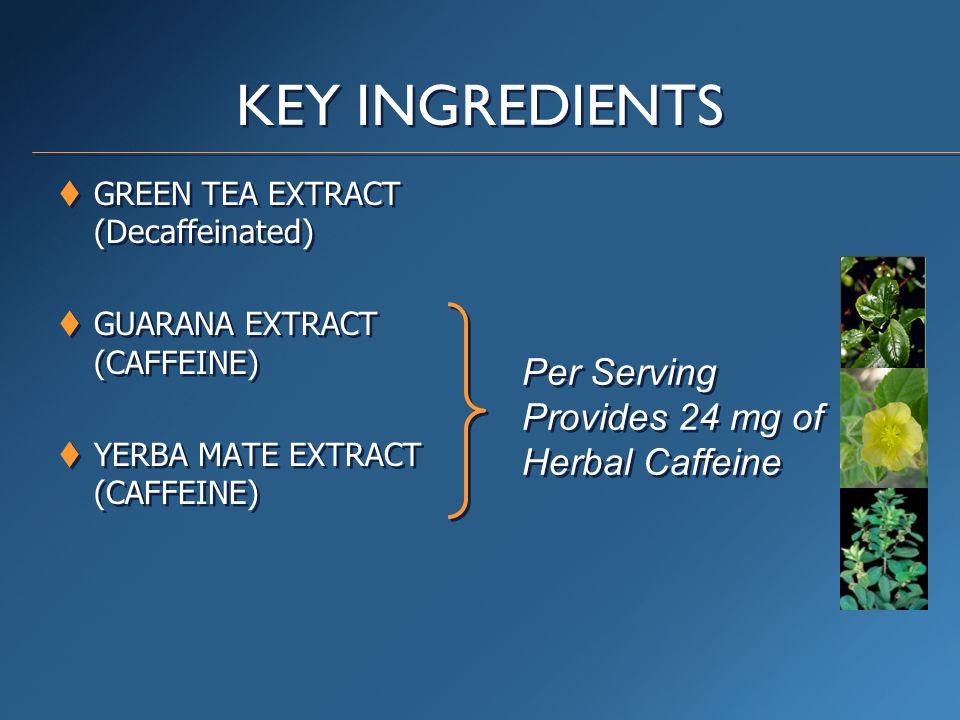 KEY INGREDIENTS  GREEN TEA EXTRACT (Decaffeinated)  GUARANA EXTRACT (CAFFEINE)  YERBA MATE EXTRACT (CAFFEINE)  GREEN TEA EXTRACT (Decaffeinated) 