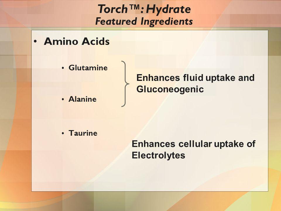 Amino Acids Glutamine Alanine Taurine Enhances fluid uptake and Gluconeogenic Enhances cellular uptake of Electrolytes Torch™: Hydrate Featured Ingredients