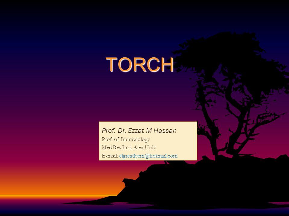 TORCH Prof. Dr. Ezzat M Hassan Prof. of Immunology Med Res Inst, Alex Univ E-mail: elgreatlyem@hotmail.com