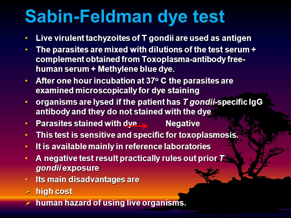 Sabin-Feldman dye test Live virulent tachyzoites of T gondii are used as antigenLive virulent tachyzoites of T gondii are used as antigen The parasites are mixed with dilutions of the test serum + complement obtained from Toxoplasma-antibody free- human serum + Methylene blue dye.The parasites are mixed with dilutions of the test serum + complement obtained from Toxoplasma-antibody free- human serum + Methylene blue dye.