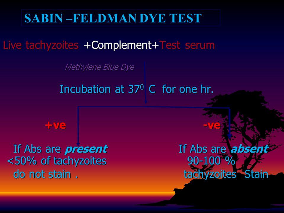 SABIN –FELDMAN DYE TEST Live tachyzoites +Complement+Test serum Methylene Blue Dye Methylene Blue Dye Incubation at 37 0 C for one hr.