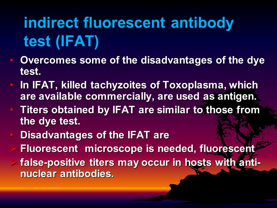 indirect fluorescent antibody test (IFAT) Overcomes some of the disadvantages of the dye test.Overcomes some of the disadvantages of the dye test.