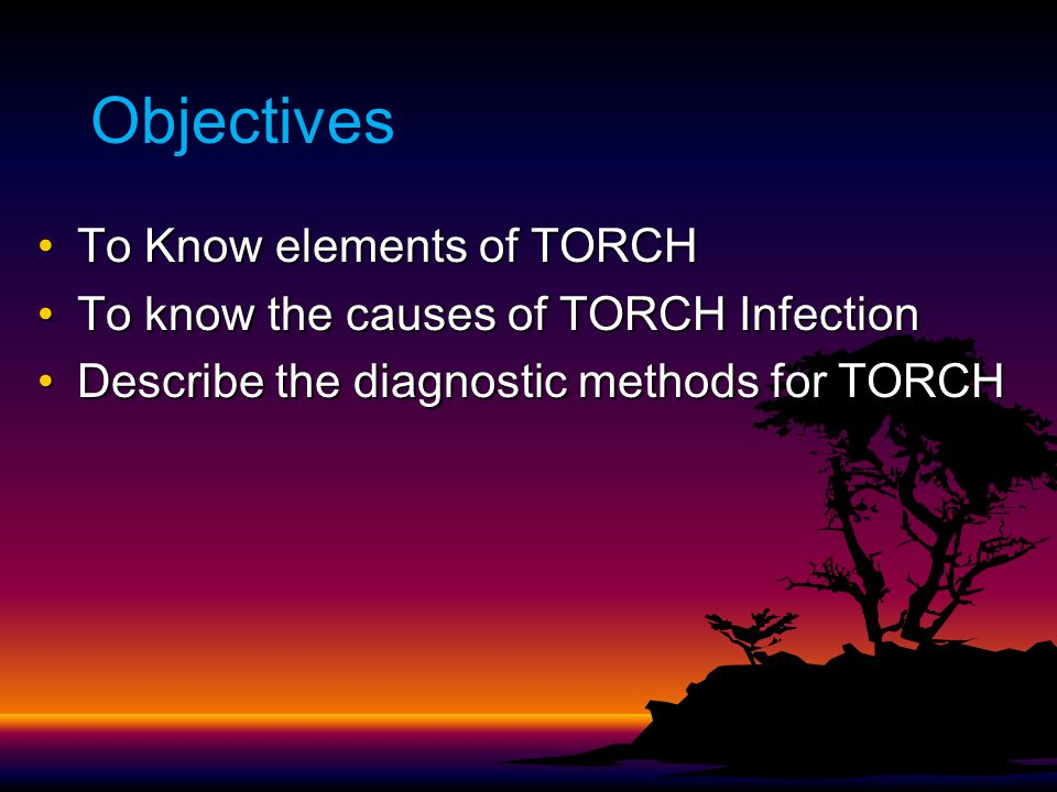 Objectives To Know elements of TORCHTo Know elements of TORCH To know the causes of TORCH InfectionTo know the causes of TORCH Infection Describe the diagnostic methods for TORCHDescribe the diagnostic methods for TORCH