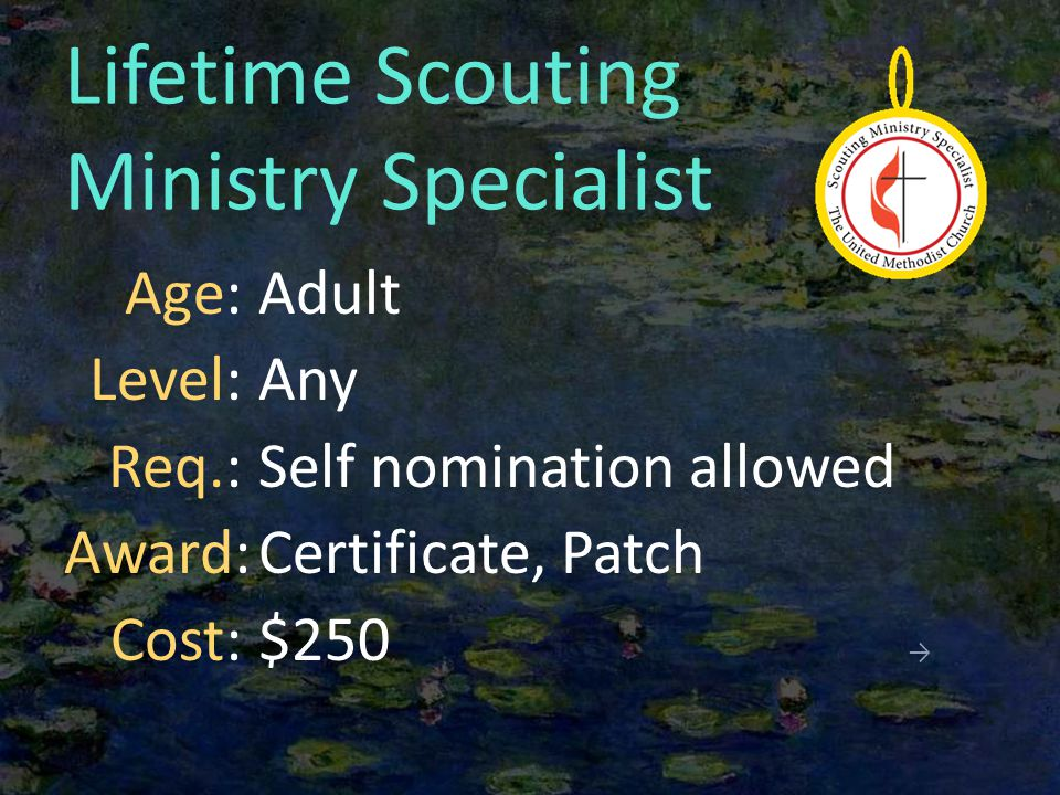 Lifetime Scouting Ministry Specialist Adult Any Self nomination allowed Certificate, Patch $250 → Age: Level: Req.: Award: Cost: